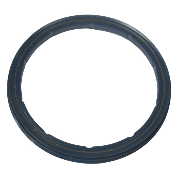 BPW Genuine Oil Seal